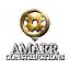 Amarr Constructions