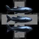 Shark Suits Ltd.