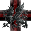 Black Dragoon Squad