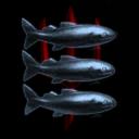 Anglers United Mercs