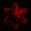Leading Supreme Star Group