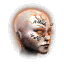Neural Boost - Elite