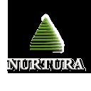 Nurtura logo