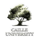 University of Caille logo