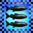 Torsk Fiskere