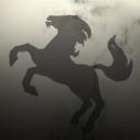 Phantom Stallion Security Forces