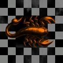 Leiurus quinquestriatus ops