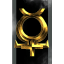 Order of the Blessed Sisters of Amarr
