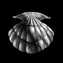 gankaballs