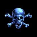 Ice Pirates LLC.