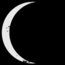 Lunar Asylum