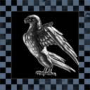 Titanium Hawk Enteprises