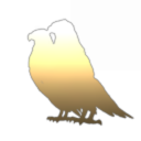 Beige Birds Quandary