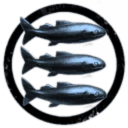 Three Parallel Blue Fish In A Cricle
