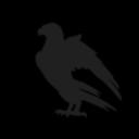 Raven.Syndicate