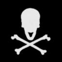Freedom Pirates