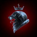 Coalition Kings