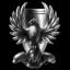 Federation Navy Snow Hawks