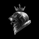 Strategic Lions Inc.