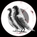 Peace War pigeon